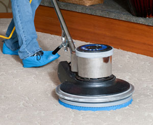 carpet cleaning prompt